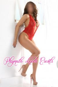 Escort  Autumn from Central Leeds